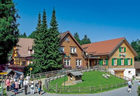 Erlebnis Waldegg Schnuggebock